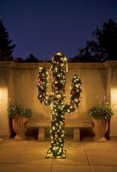 christmas, arizona style!! i know my cousin charlotte does this at her home in apache junction, AZ :)