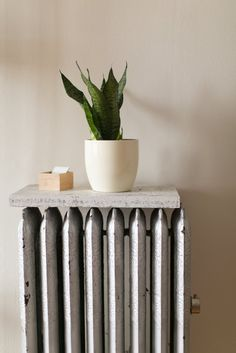A flat surface turns a radiator into a shelf!