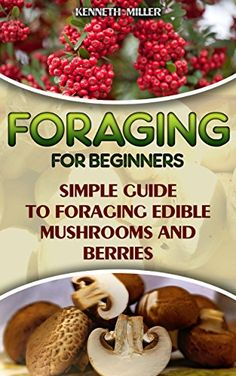 Foraging For Beginners Simple Guide to Foraging Edible Mushrooms and Berries: (Foraging, Edible Plants, Wild Berries) (edible wild plants, edible flowers,edible mushrooms) by [Miller, Kenneth]