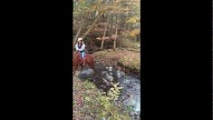 Folks on the Trail .Adventure Horse Riding in NYS by Mary Dixon Smil. Trail Riding, Horse Riding, This Is Us, Folk, Mary, The Incredibles, Horses, Pure Products, Adventure