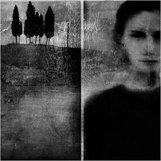 Fluidr / Bolgheri by antonio•merini