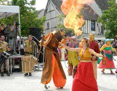 30ème Médiévales de Provins - 2013