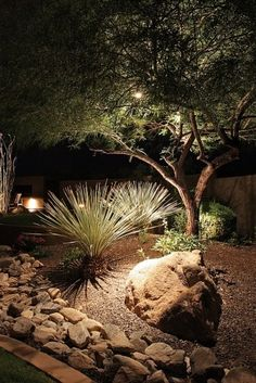 Great example of lighting for trees and large geometric plants. VB Landscape lighting typical of Palm Springs . Desert Landscaping Backyard, Landscaping A Slope, Landscaping Ideas, Modern Landscaping, Outdoor Lighting, Exterior Lighting, Lighting Ideas, Yard Lighting, Landscape Lighting Design