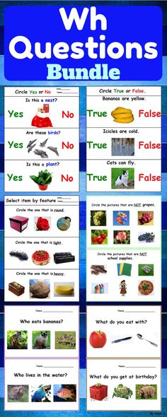 Wh Questions, Special Education Worksheets Bundle - What Questions, Who Questions, Where Questions, Which Questions, Yes - No Questions, (who what when where). These resources use real life pictures helping the students to understand and practice different kinds of questions. #whquestions #questions #worksheets #tpt #teacherspayteachers #autism #speechtherapy #slp #sped