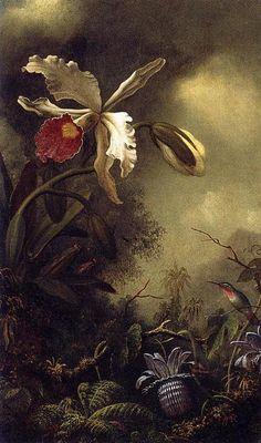 'Blanco Orquídea y colibrí', óleo sobre lienzo de Martin Johnson Heade (1819-1904, United States)