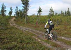 Saariselkä MTB stage1 (099) | Saariselka.com Mtb, Mountain Biking, Bike, Explore, Mountains, Nature, Travel, Bicycle, Naturaleza