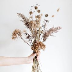 Wedding bouquet Weeds are flowers too ✨ and I joined forces again and created a botanicals&dried flowers stock photo series. Dried Flower Bouquet, Dried Flowers, Boho Flowers, Autumn Flowers, Wedding Bouquets, Wedding Flowers, Boho Wedding, Wedding Bride, Dried Flower Arrangements