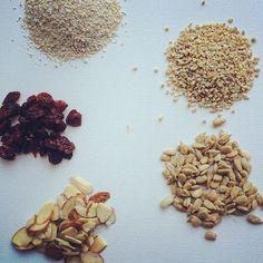 Cranberry, Oat and Seed {No Bake} Granola Bars - The well balanced FODMAPer—Kate Scarlata RDN