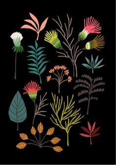 Patternbank were out at the London Illustration Fair launch last night. London's contemporary illustration event has returned this weekend with a Plant Illustration, Graphic Illustration, Flowers Black Background, Inside Art, Conversational Prints, Botanical Drawings, Mural Art, Tag Art, Vintage Flowers