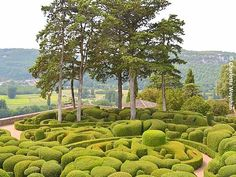 The Galloping Gardener: Almost Tuesday topiary preview .... Eyrignac and Marqueyssac