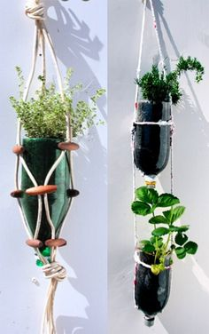 "Very cute way to ""fancy up"" the pop bottle hanging pot idea"