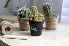 pots de plante customisé