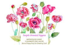 Watercolor Purple Oriental Poppy by Corner Croft on Creative Market