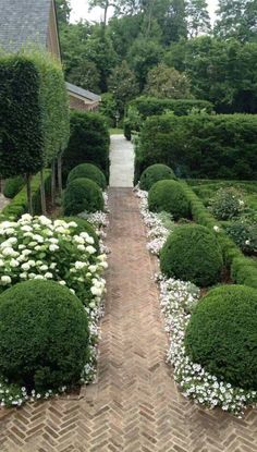 green & white landscaping