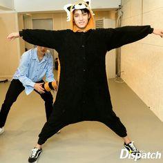 he looks dead inside Woozi, Mingyu Wonwoo, Seungkwan, Seventeen Memes, Mingyu Seventeen, Seventeen Debut, Akita, Vernon Chwe, Kim Min Gyu