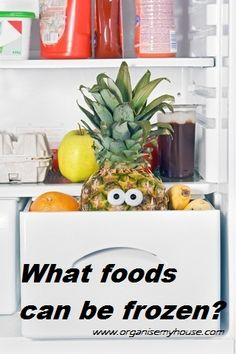 What Foods can be frozen, What can I freeze? | Organise My House