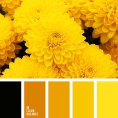 Цветовая палитра №2665