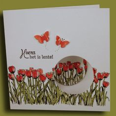 Painted Poppies Stampin' Up! Cards – Melissa's Crafting Treehouse – folding Butterfly Cards, Flower Cards, Poppy Cards, Fancy Fold Cards, Stamping Up Cards, Marianne Design, Card Making Techniques, Greeting Cards Handmade, Homemade Cards