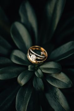 Elopement photographer, located in Portland, Oregon. Modern Photography, Jewelry Photography, Still Life Photography, Couple Photography, Wedding Photography, Product Photography, Wedding Shoot, Wedding Engagement, Engagement Photos