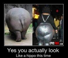 fashion-fail-hippo