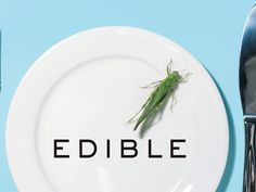 Edible: An Adventure into the World of Eating Insects and the Last Great Hope to Save the Planet (book review)