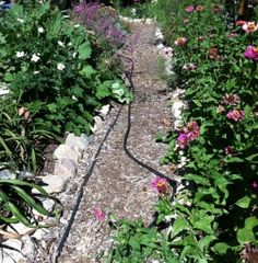 Pathways are a great asset in the garden