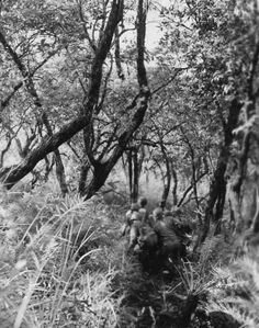 Sneaking up on the enemy in WWII Burma. Photographer Unknown