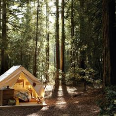 Love this camping site
