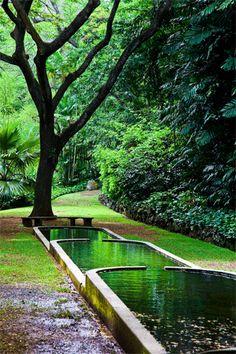 Allerton Garden, Kauai