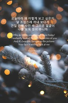 """""""Why do I miss you so much more today? I hesitantly looked through memories of you And it's bearble, because in the pictures You face is smiling back at me""""  #EXO #EXOL #LYRICS #KPOP #EXOLYRICS"""
