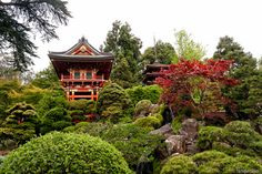 Japanese Tea Garden - San Francisco | Flickr - Photo Sharing!