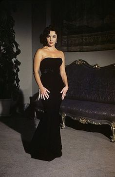 Seen here in a striking photograph by Sanford Roth, Elizabeth Taylor started as a child actress in the but reached major adult stardom in the with major roles like Father of the Bride A Place in the Sun Giant and Cat on a Hot Tin Roof Hollywood Icons, Old Hollywood Glamour, Golden Age Of Hollywood, Vintage Glamour, Hollywood Stars, Hollywood Actresses, Divas, Annie Leibovitz, Most Beautiful Women
