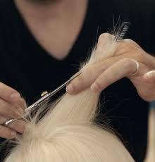 """""""剪髮理論""""에 대한 이미지 검색결과 Bobby Pins, Hair Accessories, Beauty, Hairpin, Hair Accessory, Hair Pins, Beauty Illustration"""