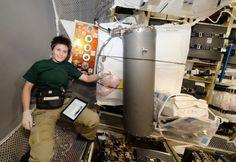 Il premier in collegamento con l'astronauta trentina sulla stazione spaziale: la sua missione ha avvicinato uomini e donne a questo mondo