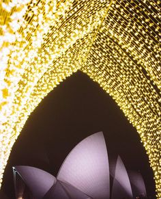 Sydney's #Vivid light festival has begun and it's magical  REGRAM: @vividsydney by popsugarau