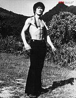 30 Best Bruce Lee Images Martial Arts Martial Artist Brandon Lee