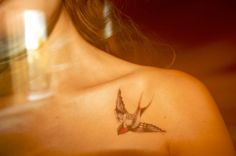 Sparrow Tattoo. Love the colors