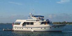 DeFever Performance Offshore Cruiser- Lapis Lazuli