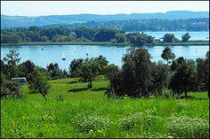 Sommerlicher Blick über den Gnadensee auf die Mettnau, der Halbinsel von Radolfzell. Dahinter erkennt man Horn auf der Höri und den Schweizer Seerücken.