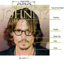 golden mean and faces  Depp