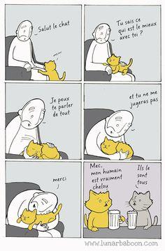 Lunarbaboon, ou l'un des webcomics les plus drôles de la toile, s'est dit que ça serait bien d'exposer en dessins le plaisir sucré d'avoir un chat dans la famille.