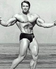 5198ae39a212b Bodybuilder Arnold Schwarzenegger Back when he was hot!