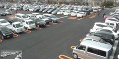 駐車場もやっと働けて活き活きしてました #VEGAS1200 #会員募集 #20150228