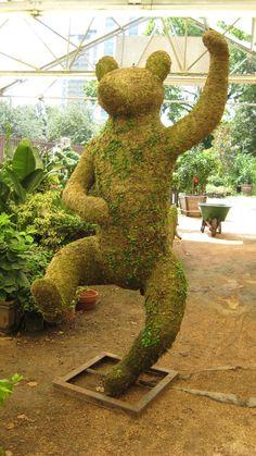 Dancing Bear Topiary - River Oaks Plant House, Houston