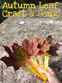 This Fluttering Autumn leaves song and craft is a lovely activity for an Autumn afternoon and you can flutter the pretty leaf fans as you sing the song.