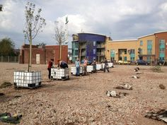 Planting an orchard on the site of the former bus depot in Moss Side - from @mosscider September 2012