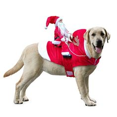 Pet Christmas Party Knitted Dress,Dog Cat Christmas Tree Cotton Shirt Bowknot Bell Tutu Puppy Kitty Dress,Pet Dog Red Cloak Costume,Autumn Winter Warm Sweater for Large Cats Dogs S