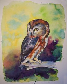 Owl Painting by Christy Freeman - Owl Fine Art Prints and Posters for Sale