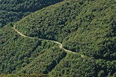 Fabrica de oxígeno / carretera hacia San José de Bolívar #tachira #instagram #instaLOVEnezuela #conocerescuidar #gf_venezuela #ig_venezuela #loves_venezuela #icu_venezuela #ig_venezuelan_pro #great_captures_Venezuela #venezuela_estrella #Instavenezuela #Igersvenezuela #ig_venezuela_ #instafoto_ve #loves_americas #ig_americas #ig_latino #ig_latinoamerica_ #igs_americas #elnacionalweb #nuestravenezuela_ #loves_southamerica #treelovers #instatree #viveverde #magestic #v_e_n_e_z_u_e_l_a_