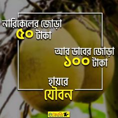 Funny Photo Captions, Funny Photos, Bangla Funny Photo, Bengali Art, Bangla Love Quotes, Funny Facebook Status, Love Sms, Typography Art, Jokes Quotes